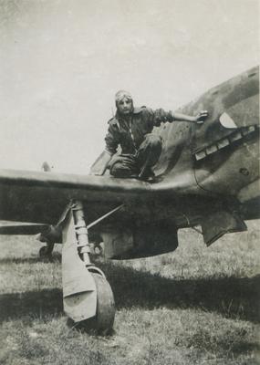 Falco-2